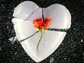 با زبان کوچک خود، دل بزرگ همدیگر را نشکانیم......